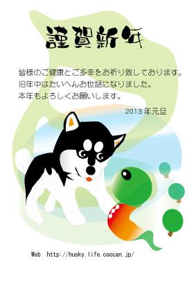 B_20130101_8